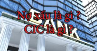 no-xau-cic-la-gi