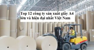 cong-ty-san-xuat-giay-a4