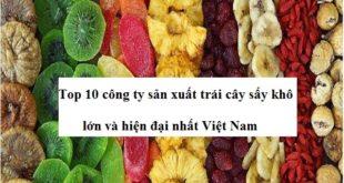 cong-ty-san-xuat-trai-cay-say-kho