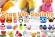 shop-ban-squishy