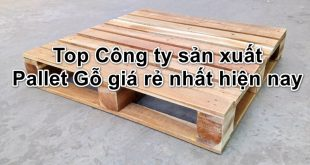 cong-ty-san-xuat-pallet-go